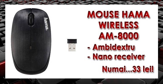 MOUSE WIRELESS HAMA AM-8000